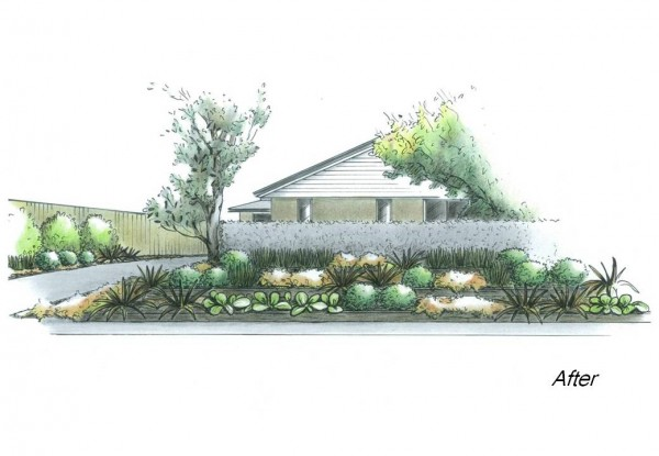 Planting design for a frontyard with a slope towards the road